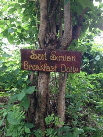 San Simian Eco Lodge: Paradise