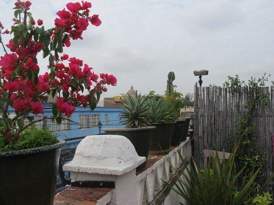 El Diablo y la Sandia Libres: Vista de la terraza