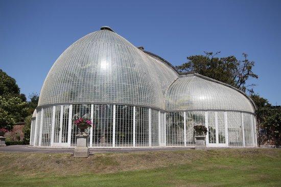 Bicton Park Botanical Gardens: The Palm House