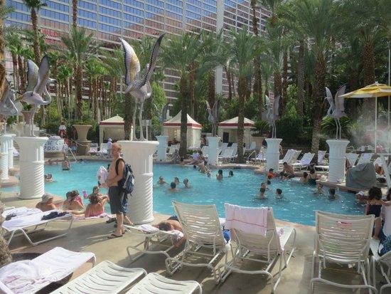 Flamingo Las Vegas Hotel & Casino: Pool område