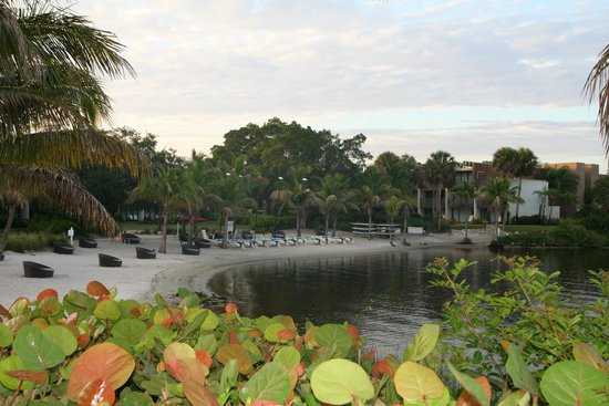 Club Med Sandpiper Bay : View of the beach