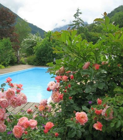 Best Western Plus Berghotel Rehlegg: Swim outdoors with mountains in the background!