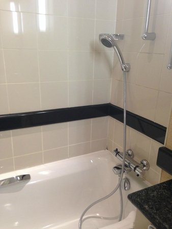 Tbilisi Marriott Hotel: Ванная