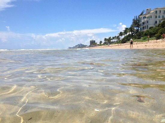 Pelican Grand Beach Resort, A Noble House Resort: Pelican water