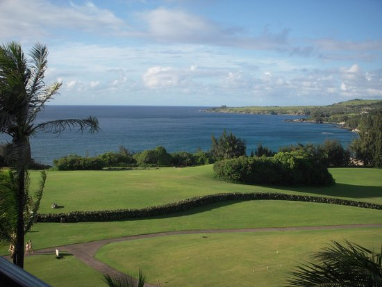 The Ritz-Carlton, Kapalua: Another view from our room