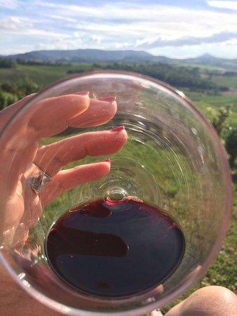 Relais Villa Grazianella - Fattoria del Cerro : A glass with a view!