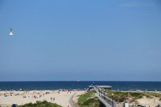 Attache Resort Motel : The wonderful view