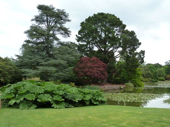Sheffield Park and Garden: A beautiful spot to be