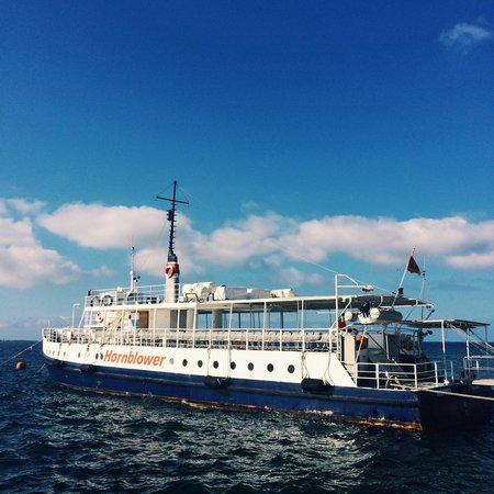 Hornblower Cruises : The Hornblower