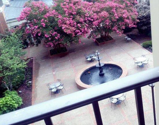 Sheraton Music City Hotel: Balcony View