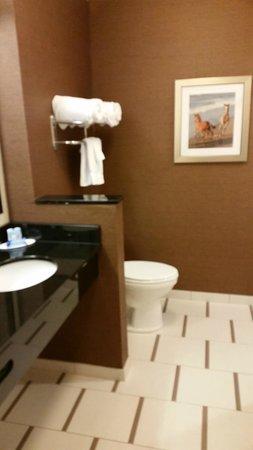 Fairfield Inn & Suites Chincoteague Island: Bathroom