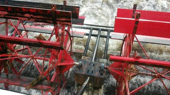 Dubuque River Rides : Pattle Wheels run this boot !