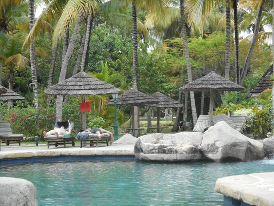 Galley Bay Resort : Relaxing pool area.