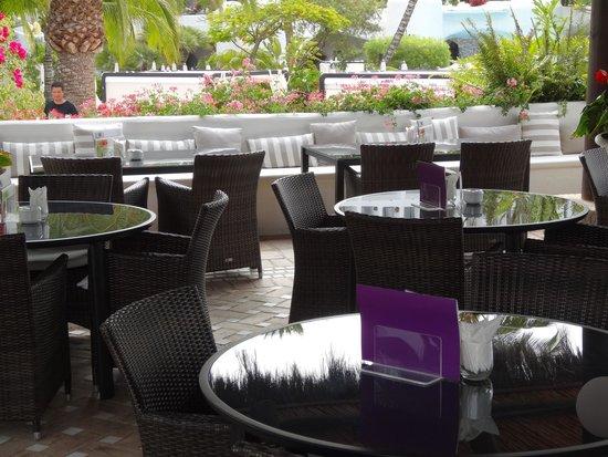 Hotel Jardín Tropical: Eis salon en bar
