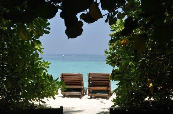 Makunudu Island : l'accès à la plage du bungalow