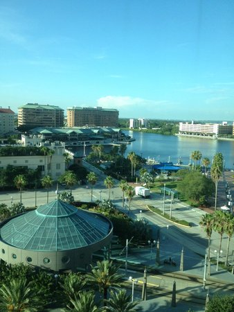 Embassy Suites by Hilton Tampa - Downtown Convention Center: View of the bay