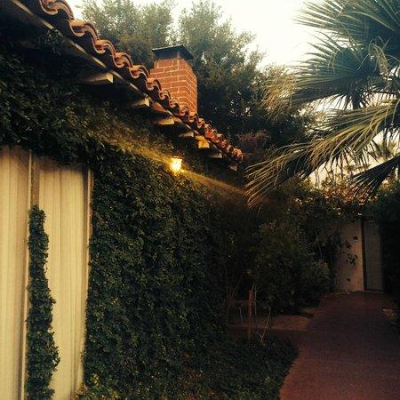 Colony Palms Hotel : Garden Casita