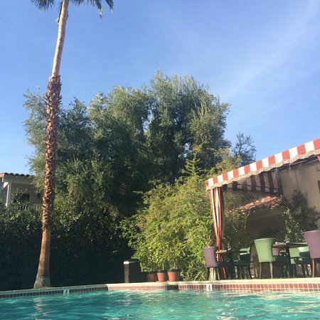 Colony Palms Hotel: Poolside bliss!