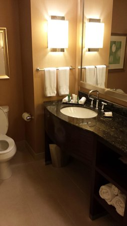 Hilton Orlando: Clean bathroom