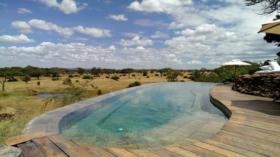 Singita Faru Faru Lodge : The main pool