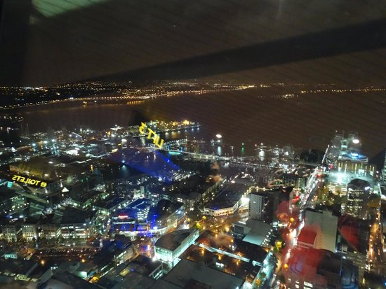 View from Sky Tower Auckland
