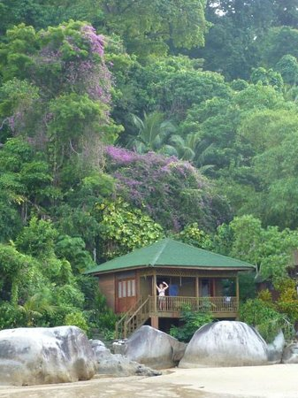 Bamboo Hill Chalets : Don't worry, be happy