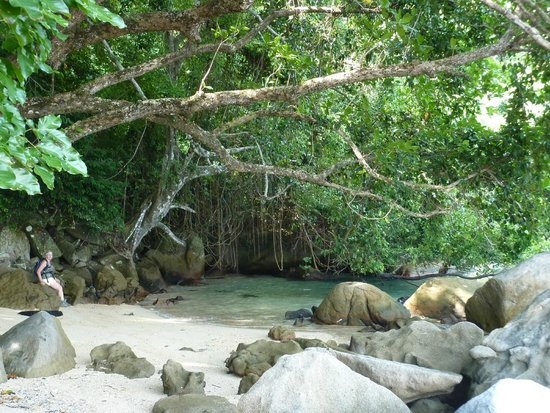 Bamboo Hill Chalets : Mooi plekje tijdens prachtige jungle track.