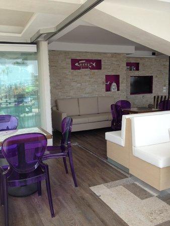 Rivamare Hotel: zona bar/piscina