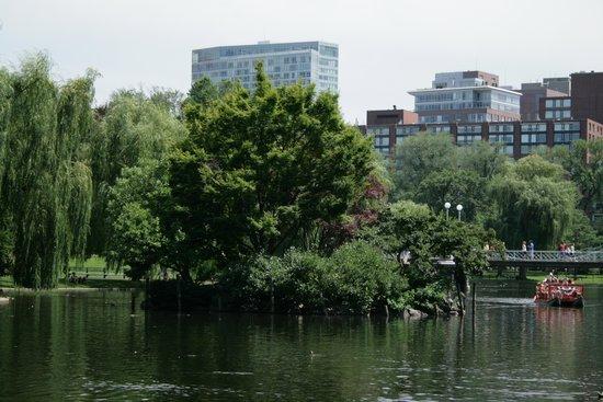 Boston Public Garden: Garden Pond