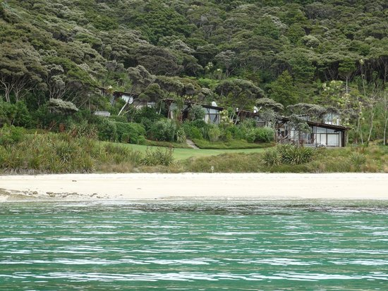 Fullers GreatSights Bay of Islands Day Tours: Cream Trip Cruise