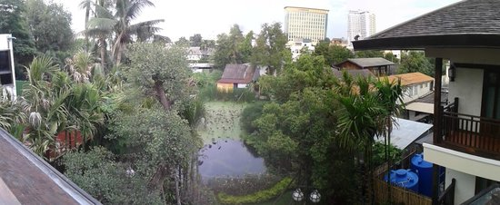 Viang Thapae Resort: view out towards the back of the hotel (pond in view)