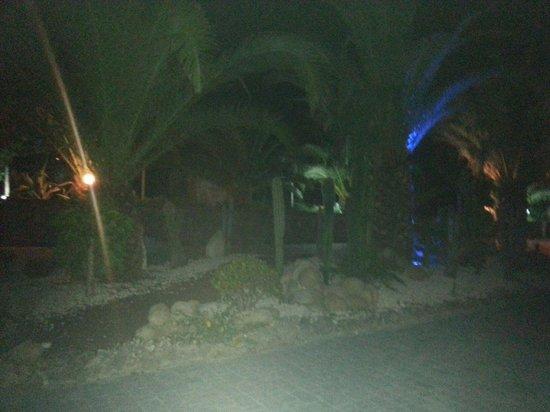 Vascellero Club Resort: Ottima cura per le piante