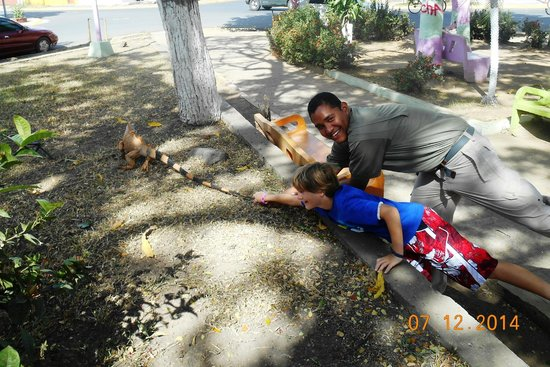 Guanacaste Viajes & Tours: Santos and my son at the park with iguana (they are not pulling the tail...just looks like it)