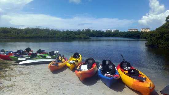 Sea Life Kayak Adventures: Sea Life Kayaks ready to roll!