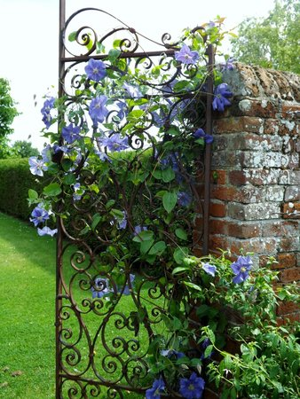 Crow's Hall: Clematis Gate