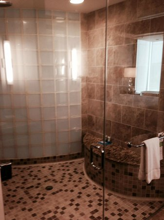 Hyatt House Falls Church: Huge shower!