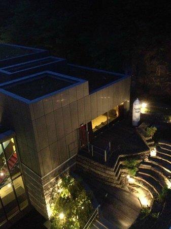 Radisson Blu Palace Hotel, Spa : nachtuitzicht