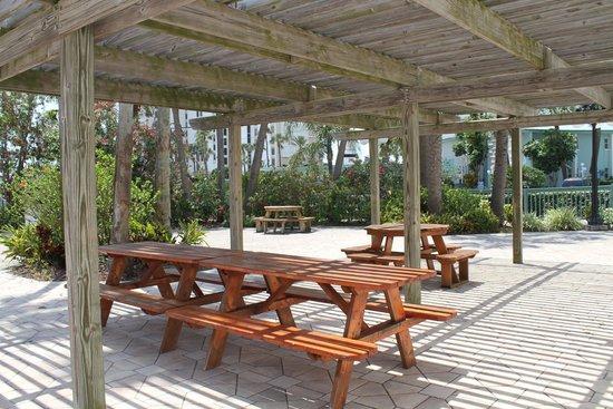 Dockside Condos : Outdoor picnic area