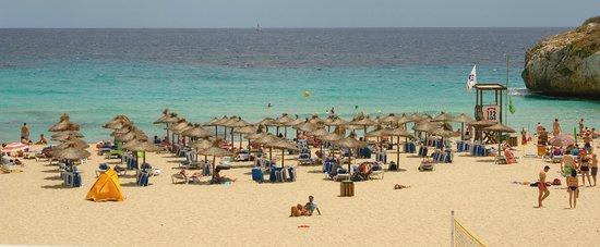 Club Hotel Tropicana Mallorca: Praia vista do hotel