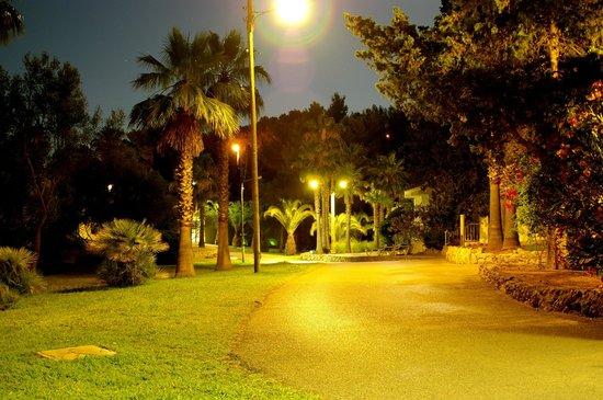 Club Hotel Tropicana Mallorca: By night