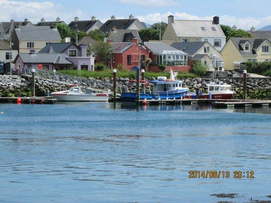 Deros Coach Tours: Dingle harbor view