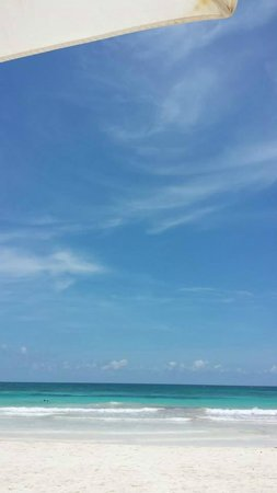 Casa Violeta : View from Violeta beach chairs