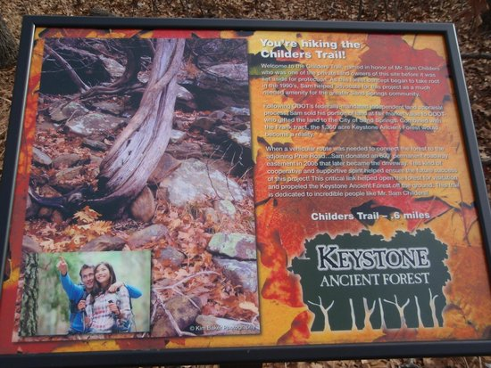 Keystone Ancient Forest: sign