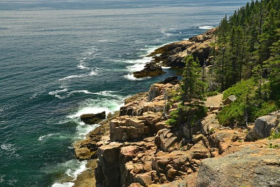 At Your Service Private Tours: From Otter Cliffs