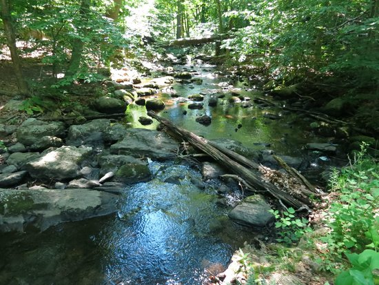 Greenwich, CT: stream