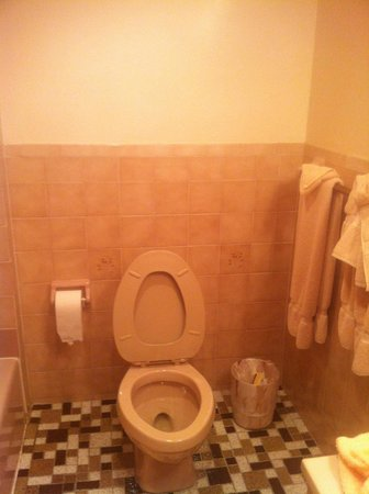 Salisbury Hotel: les toilettes