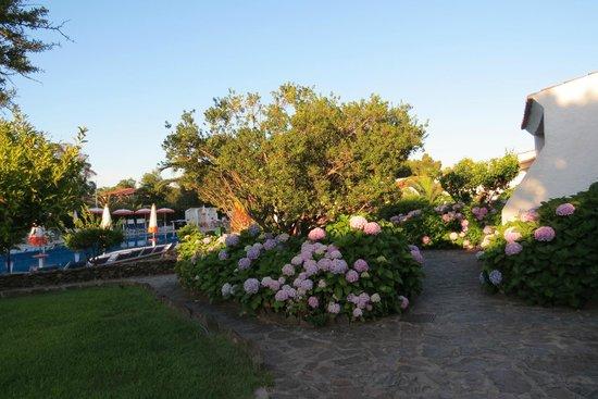 Villaggio Li Cucutti: la végétation