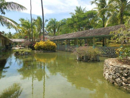 Iberostar Bavaro Suites: Lago interior, zona de buffet