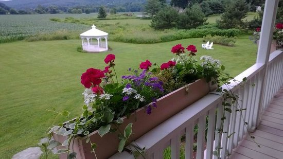 Mad River Inn: View from the back porch.  Lovely...