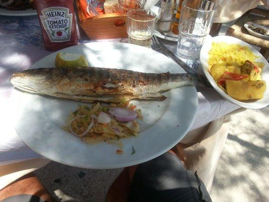 Muses Restaurant: zeebaars